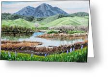 Late Winter In California Greeting Card