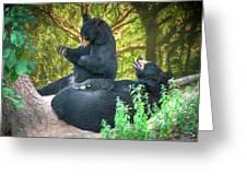 Laughing Bears Greeting Card