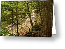 Laughing Whitefish Falls 2 Greeting Card by Michael Peychich