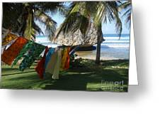 Laundry Day In Barbados Greeting Card