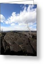 Lava Field Greeting Card