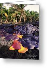 Lava Flow And Palms Greeting Card