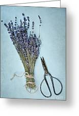 Lavender And Antique Scissors Greeting Card