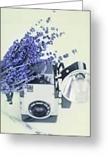 Lavender And Kodak Brownie Camera Greeting Card
