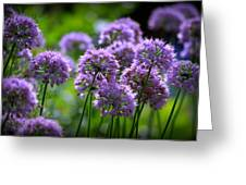 Lavender Breeze Greeting Card