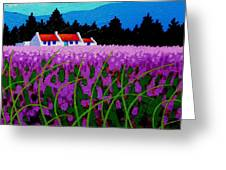 Lavender Field - County Wicklow - Ireland Greeting Card