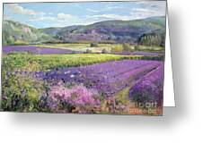 Lavender Fields In Old Provence Greeting Card
