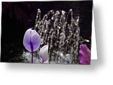 Lavender Flower At Fountain Greeting Card