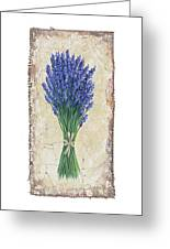 Lavender II Greeting Card