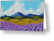 Lavender In Provence Greeting Card