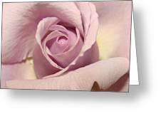 Lavender Mini Rose Greeting Card