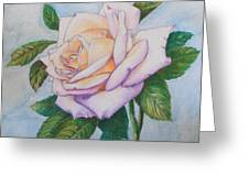 Lavender Rose Greeting Card