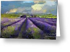 Lavenders Of South Greeting Card