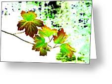 Lavish Leaves 4 Greeting Card