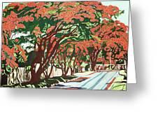 Lawson Avenue Flamboyants Greeting Card