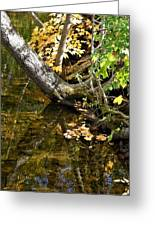 Layered Reflections Greeting Card