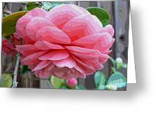 Layers Of Pink Camellia - Digital Art Greeting Card