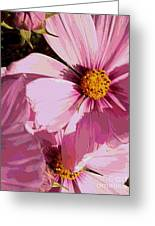 Layers Of Pink Cosmos - Digital Art Greeting Card