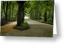Lazienki Park Warsaw Diffused Greeting Card