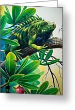 Lazin' Iguana Greeting Card