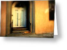 Lazy Afternoon At Kings Street In Charleston Sc Greeting Card