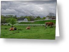 Lazy Afternoon In The Country Greeting Card