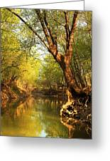 Lazy Afternoon On The Creek 2 Greeting Card