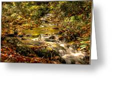 Lazy Mountain Water Fall Greeting Card