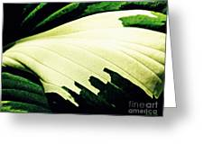 Leaf Abstract 7 Greeting Card