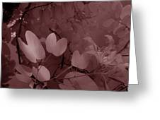 Leaf And Flower 2 Greeting Card