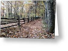 Leaf Covered Trail Greeting Card