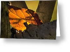 Leaf In Fork Greeting Card