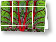 Leaf Of Life Greeting Card