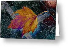 Leaf On Bricks 4 Greeting Card
