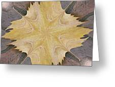 Leaf On Bricks 6 Greeting Card