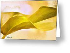Leaf Y Greeting Card