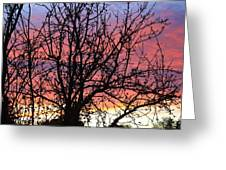 Leafless Silhouette Greeting Card