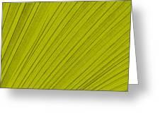 Leafy Leaf Greeting Card