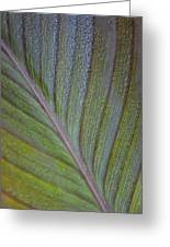 Leafy Texture Greeting Card