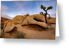 Lean On Me Greeting Card by John Hight