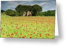 Leaning Farmhouse Greeting Card