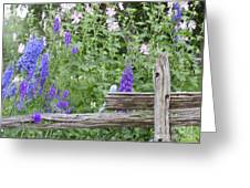 Leaning On The Fence Greeting Card