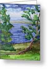 Leaning Tree By Lake Sacandaga Greeting Card