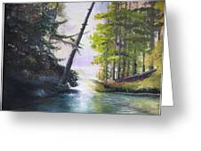 Leaning Tree Lake George Greeting Card