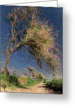 Leaning Tree Greeting Card