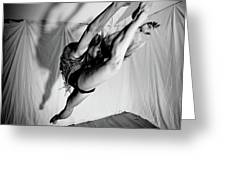 Leaping In Studio Greeting Card
