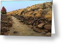 Learn To Swim, Creek Bed Quickly Filling With Water During Autumn Rainstorms In The High Desert Greeting Card