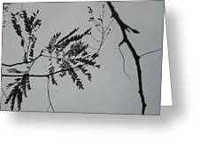 Leaves Against A Grey Sky Greeting Card