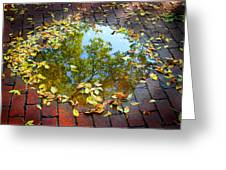 Leaves And A Puddle Greeting Card
