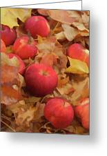 Leaves And Apples Greeting Card